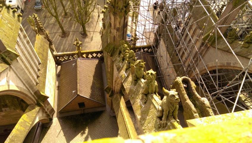 waterspuwers, mogelijke inspiratiebron voor Jeroen Bosch, te zien in Jeroen Bosch jaar