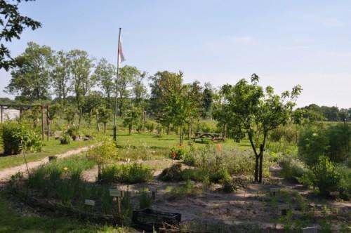 Kennemerland: moestuin Leyduin